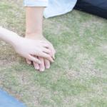 俳優の勝地涼さんと元AKB48の前田敦子さんが熱愛